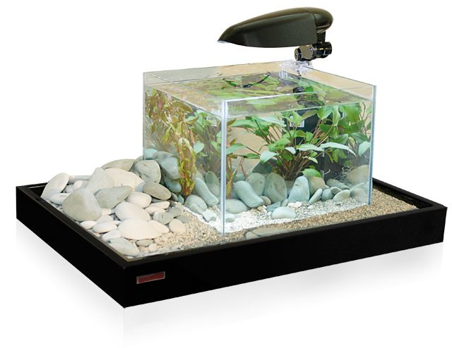 Acquariodiscount for Acquari design vendita