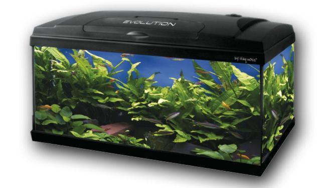 Acquariodiscount vendita on line articoli per acquario for Vendita on line acquari
