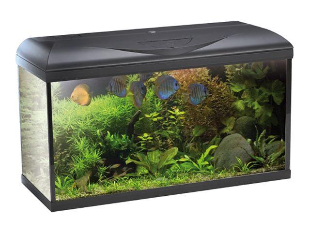 acquariodiscount vendita on line articoli per acquario