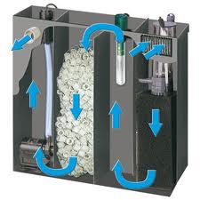 Acquariodiscount for Acquario per tartarughe con filtro