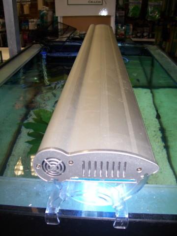 Acquariodiscount vendita on line articoli per acquario for Acquari marini offerte