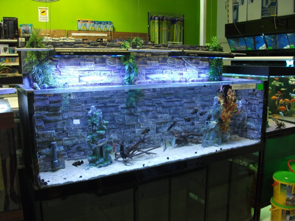 Acquariodiscount for Acquario arredamento