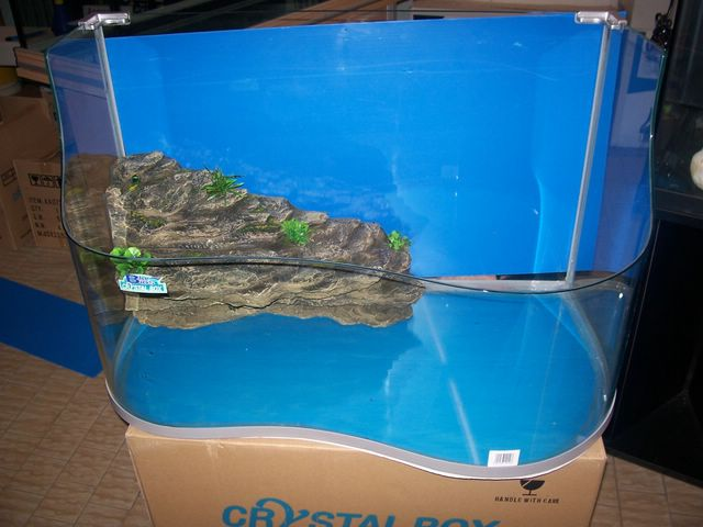 Acquariodiscount for Tartarughiera grande