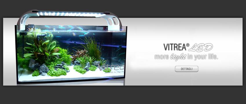 Acquariodiscount vendita on line articoli per acquario for Acquari nuovi in offerta